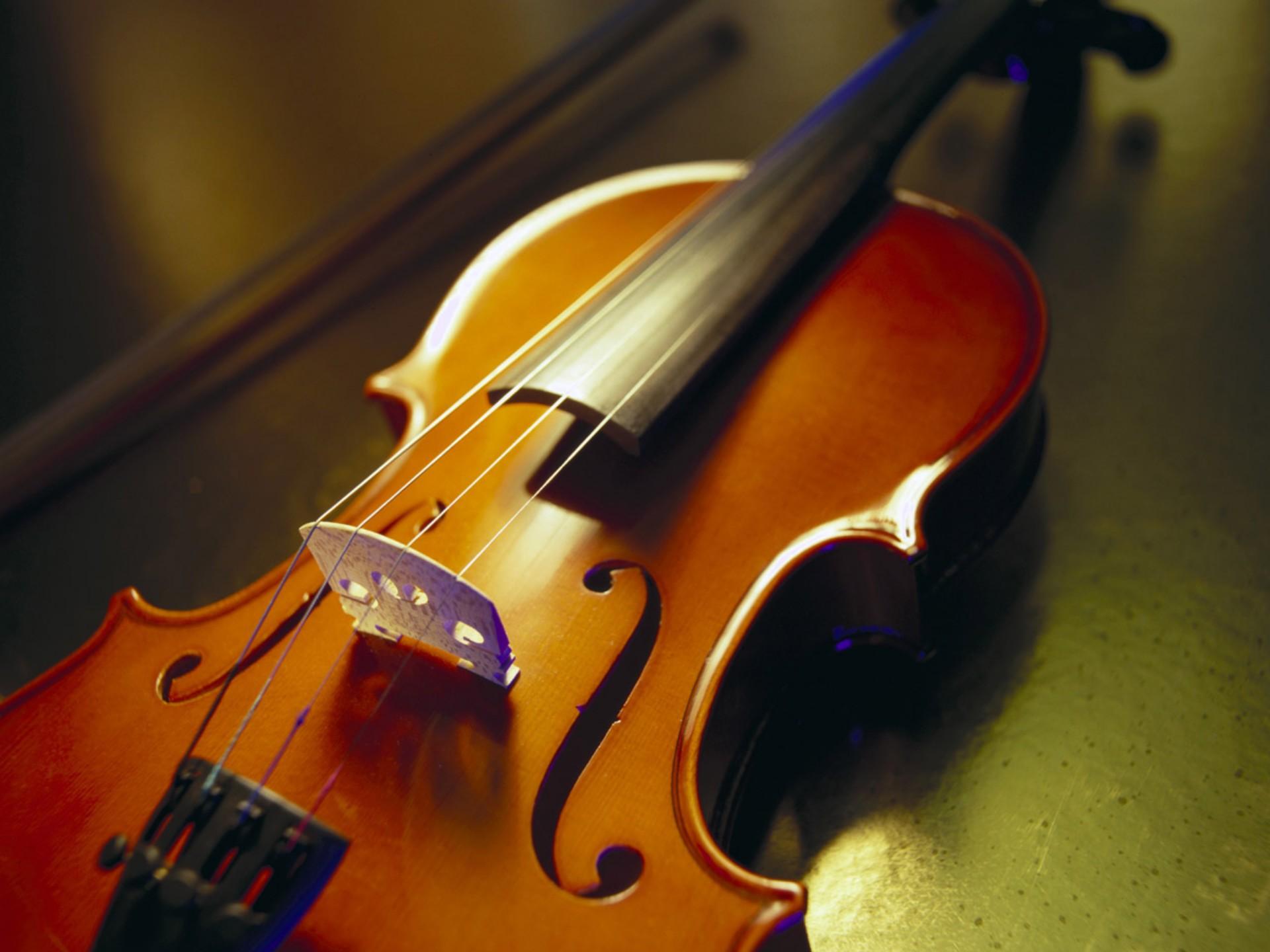 Фото: Скрипка и принципы ее звучания